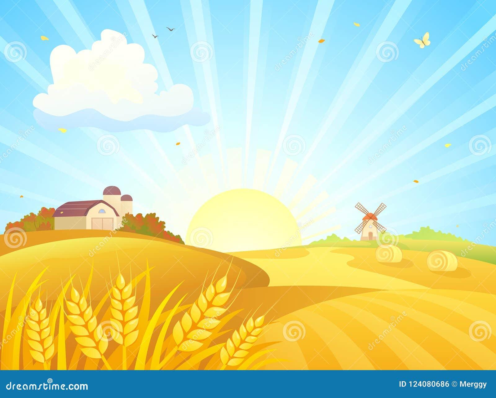 Nascer do sol da exploração agrícola do outono