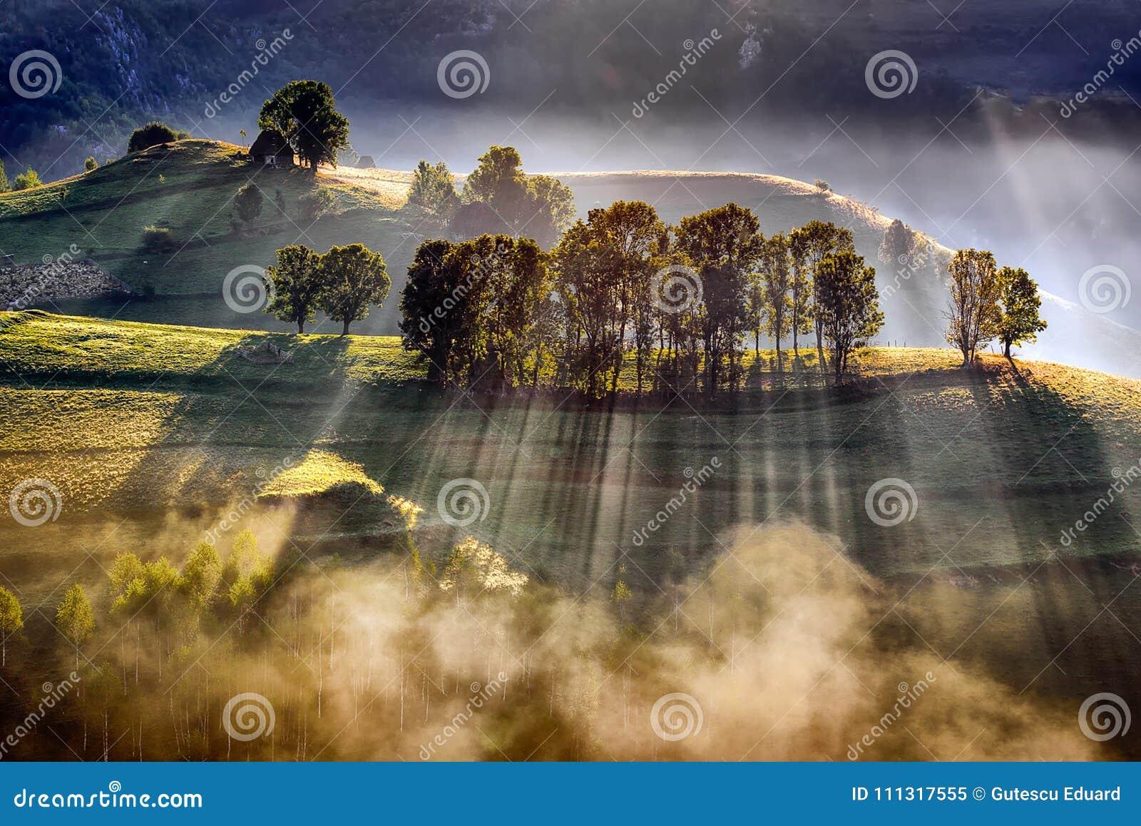 Nascer do sol magnífico no Transylvania County em Romênia com névoa no outono