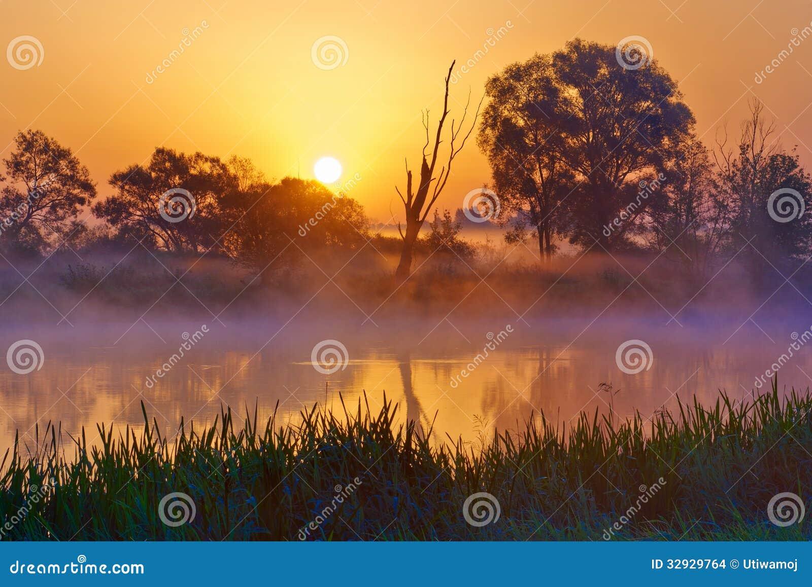 Nascer do sol nevoento bonito sobre o rio de Narew.