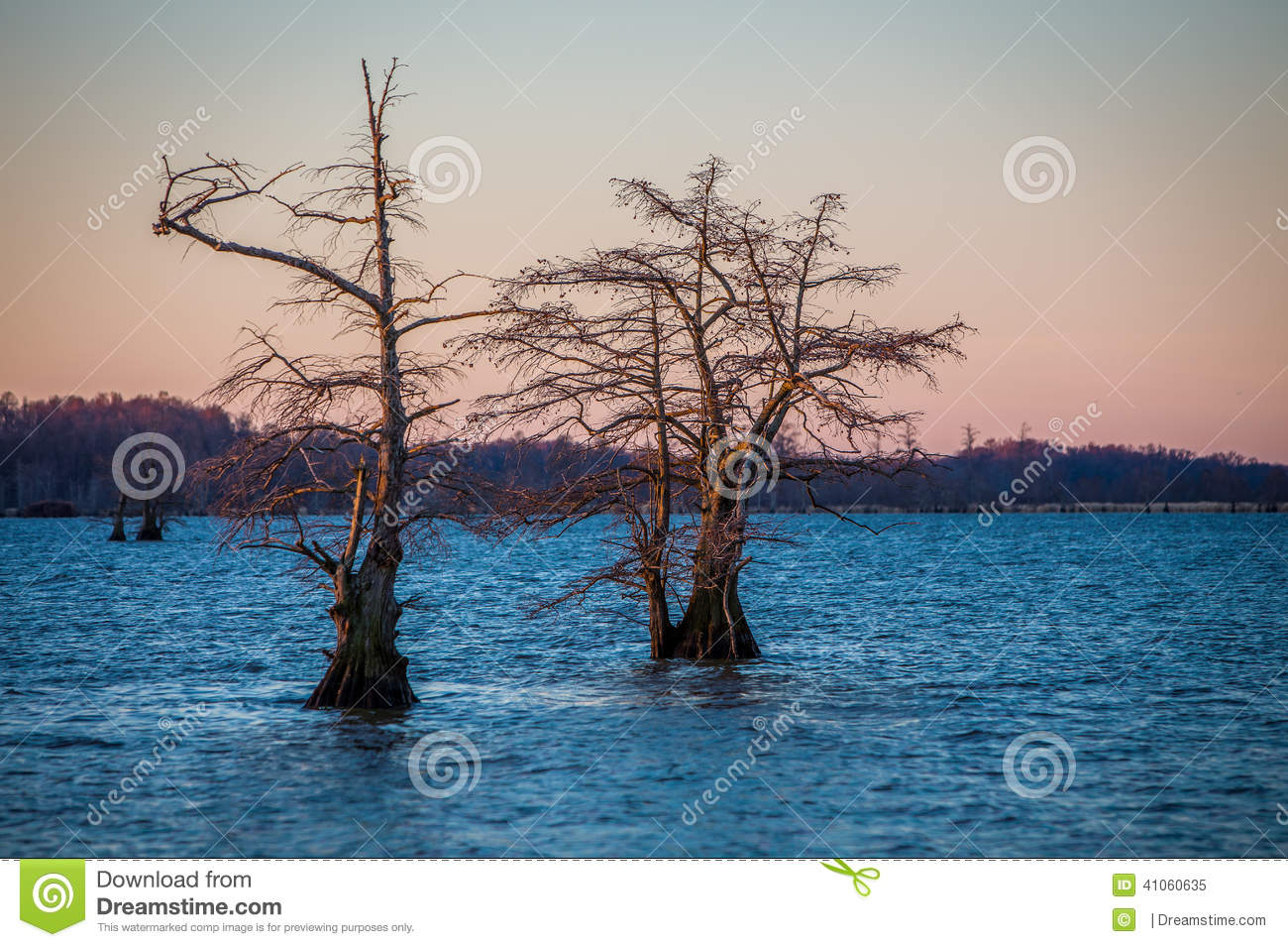 Nascer do sol no lago Reelfoot
