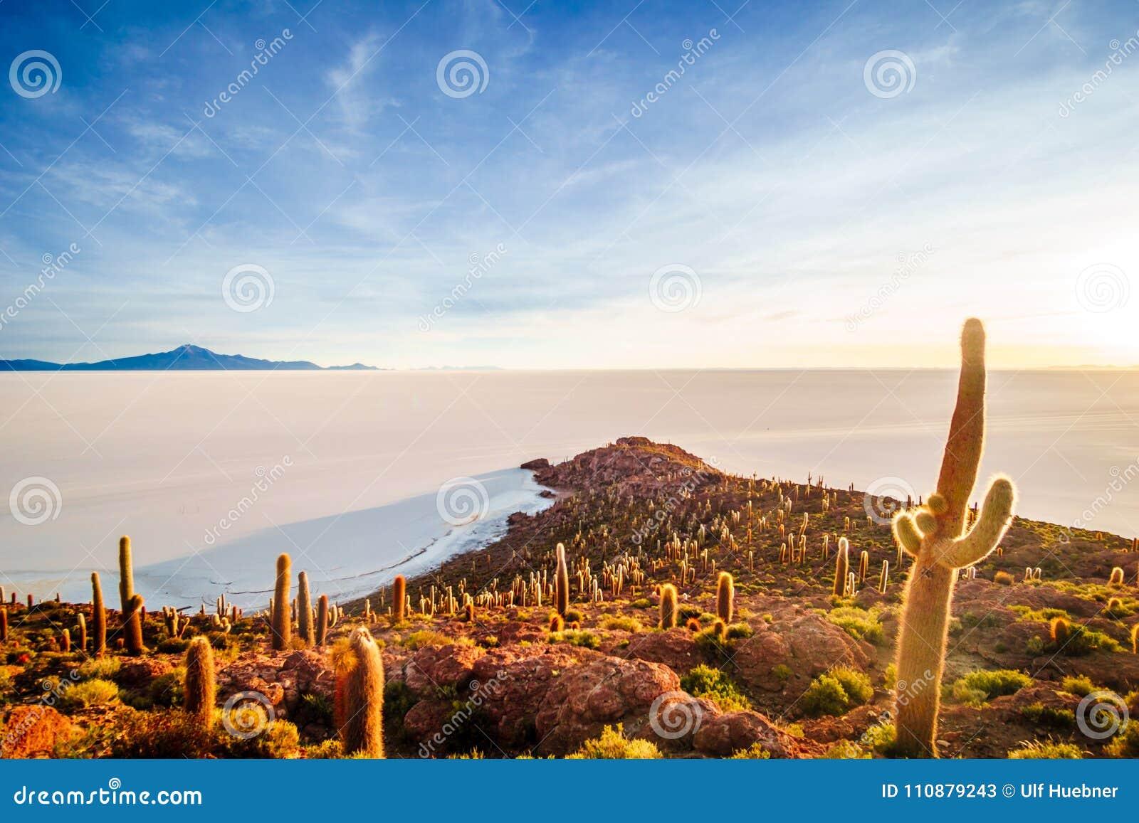 Nascer do sol sobre o incahuasi da ilha pelo lago de sal Uyuni em Bolívia