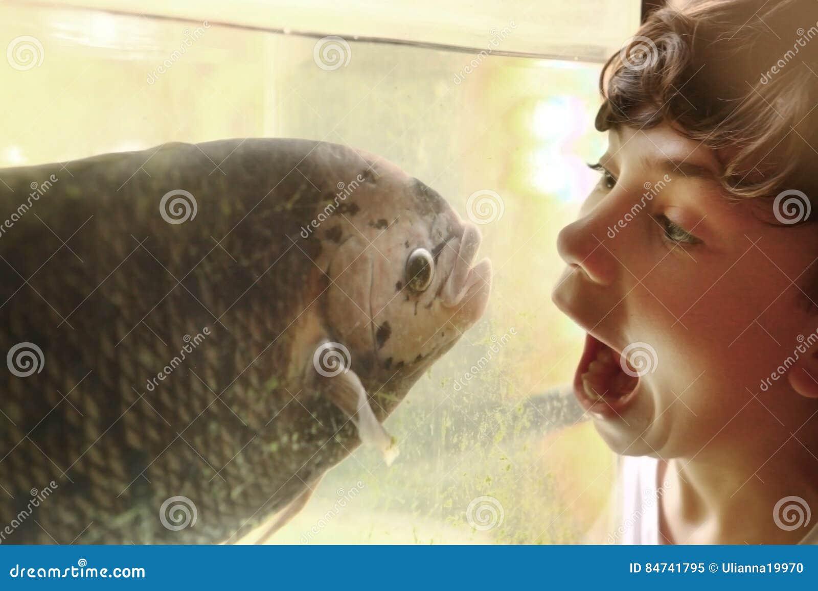 Nastoletnia chłopiec wyśmiewa ryba w akwarium