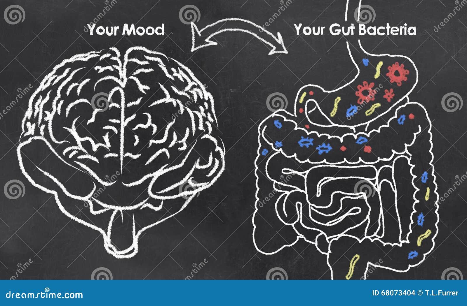 Nastrój i żyłek bakterie