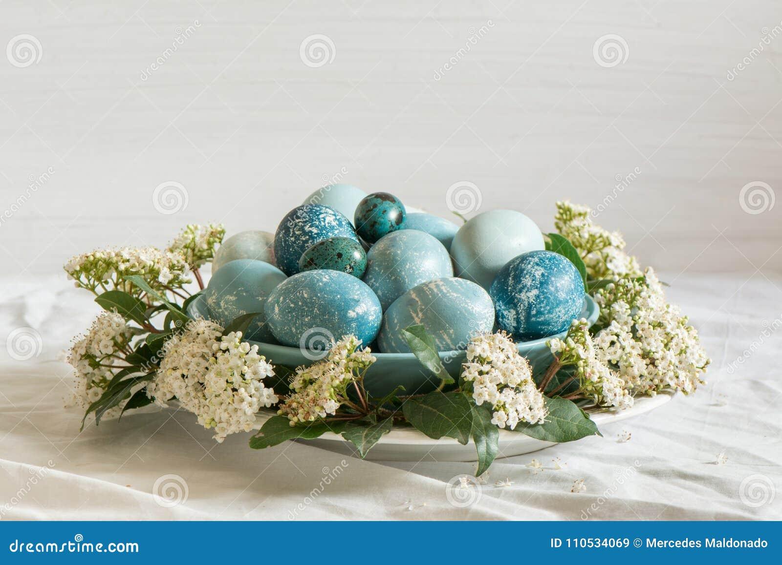 Natürlich Gefärbte Blaue Eier Ostern Umgeben Durch Weiße Blumen
