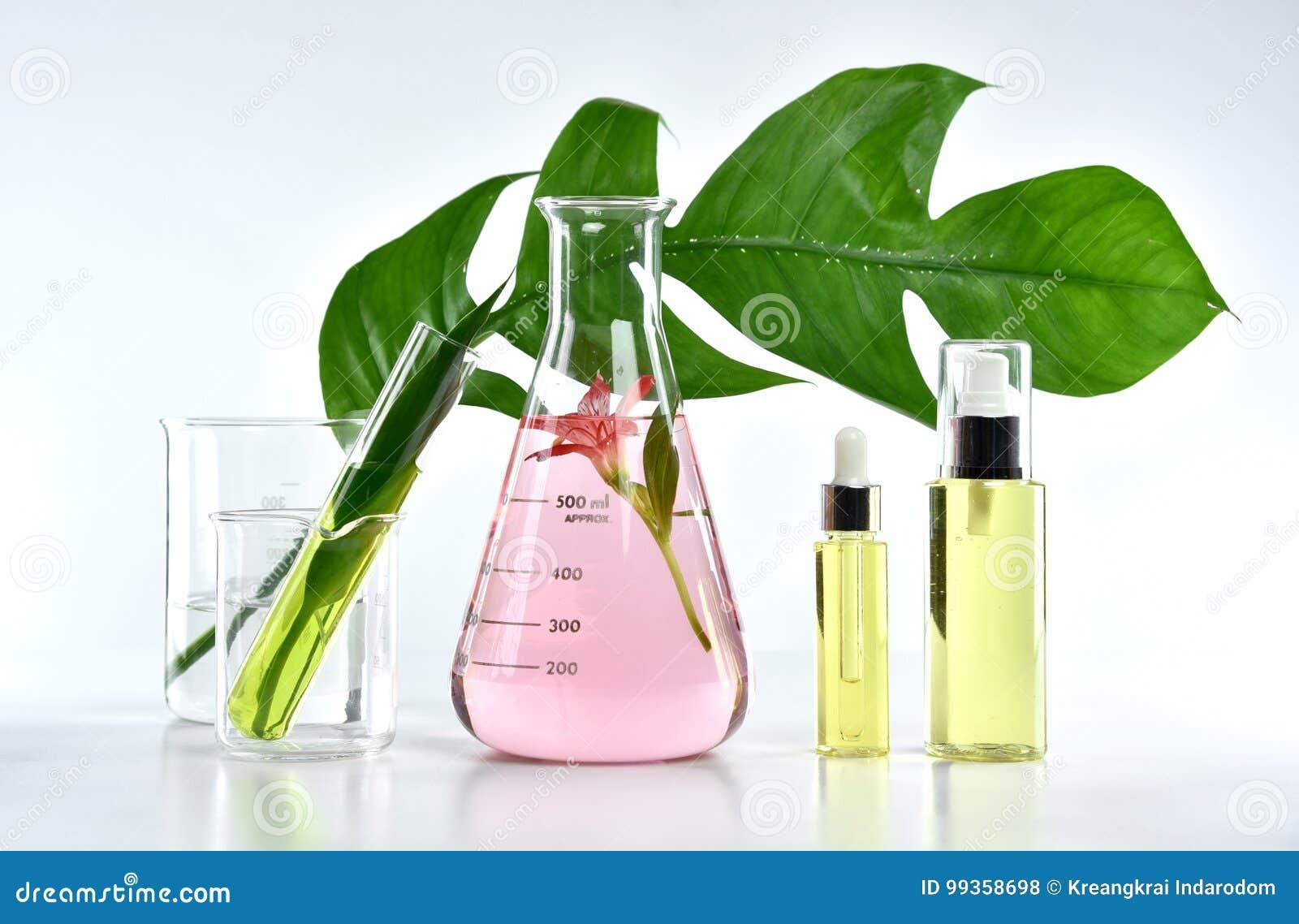 Natürliche Hautpflegeschönheitsprodukte, natürliche organische Botanikextraktion und wissenschaftliche Glaswaren
