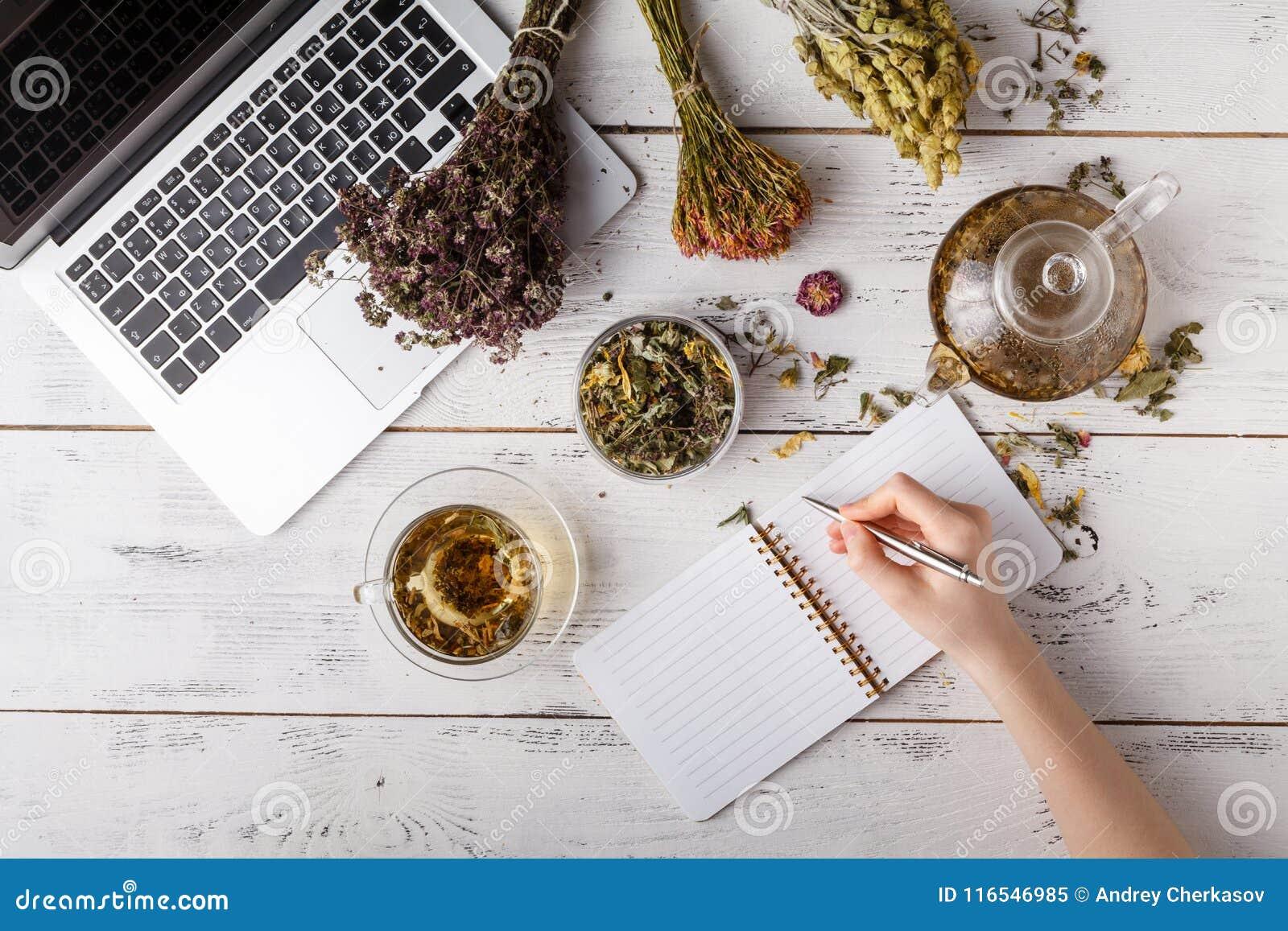 Natürliche Medizin Kräuter, medizinische Flaschen und altes Rezept buchen mit Kopienraum für Ihren Text