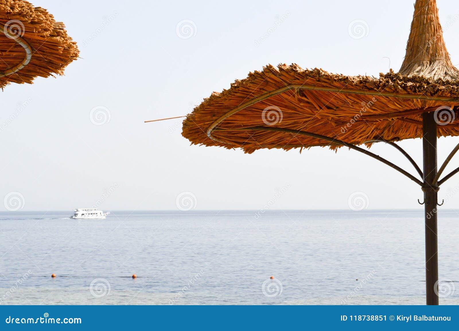 Natürliche Sonnenschirme des schönen Strohs in Form von Hüten und grüne Palmen in einer tropischen Wüste nehmen gegen das blaue S