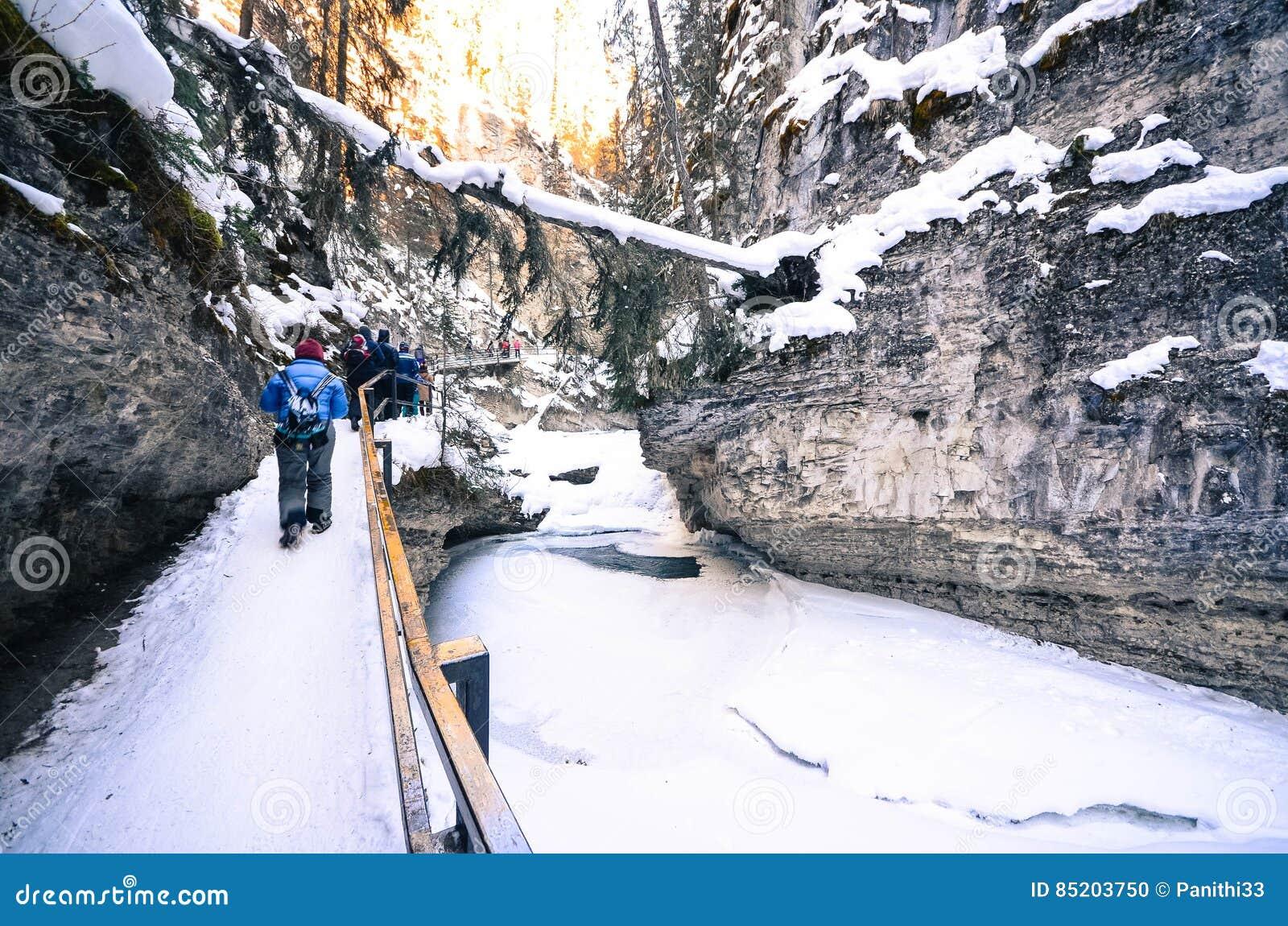 Natürliche Spur zu Johnston Canyon Waterfalls