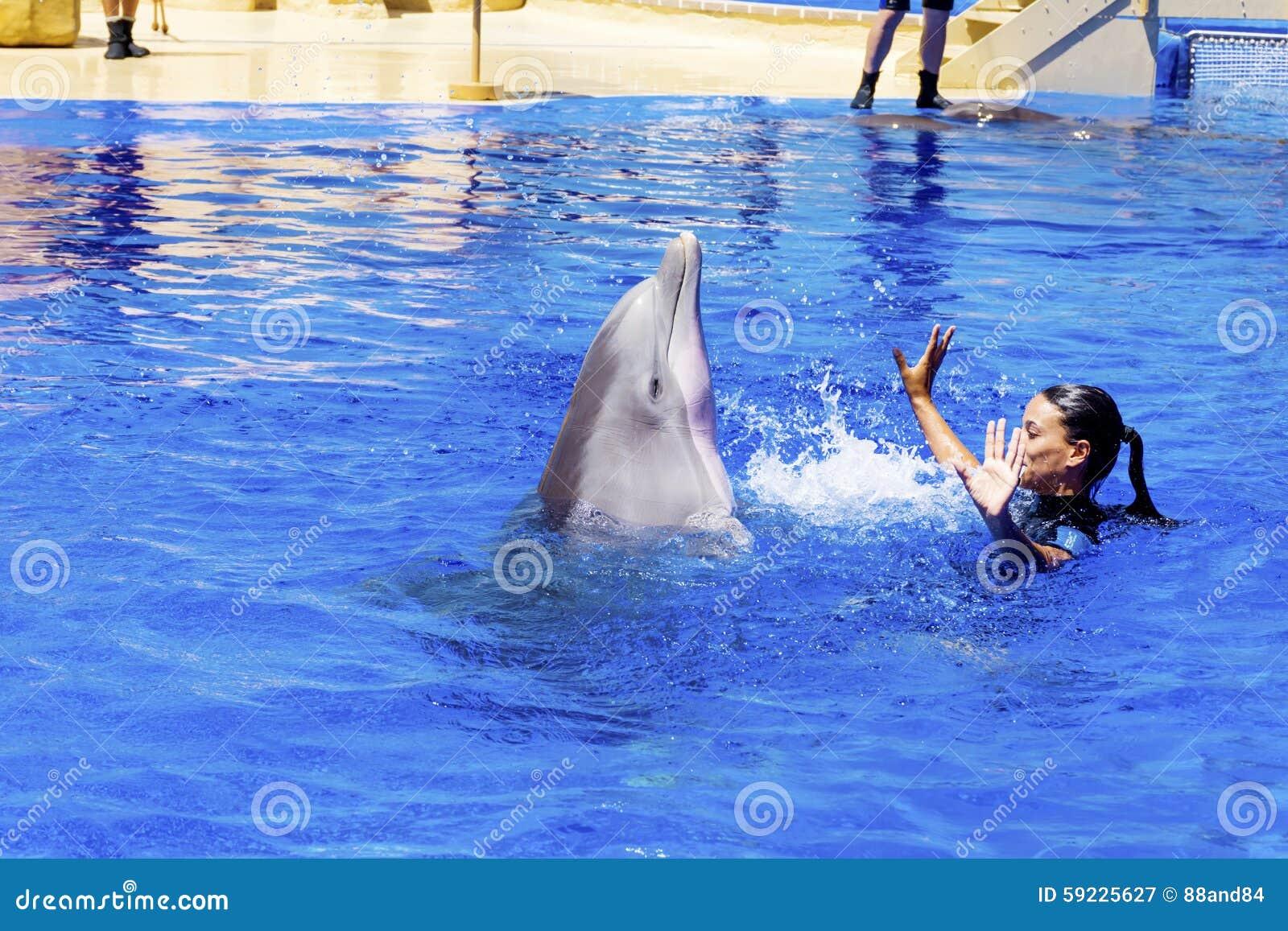 Download Natación Del Instructor De La Mujer Con Los Delfínes Fotografía editorial - Imagen de cuddly, lindo: 59225627