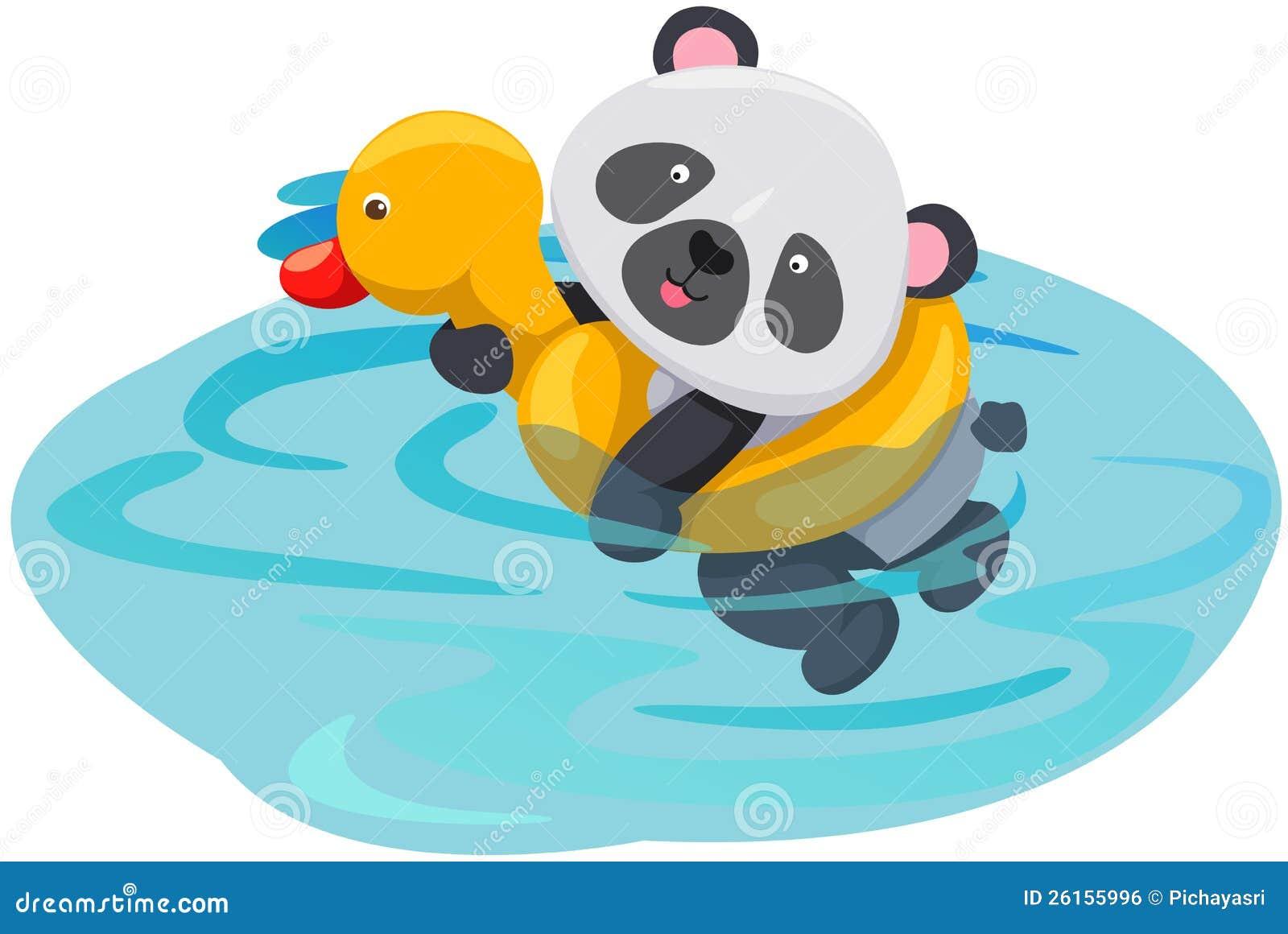 Natation de panda avec le tube de canard image libre de - Illustration canard ...