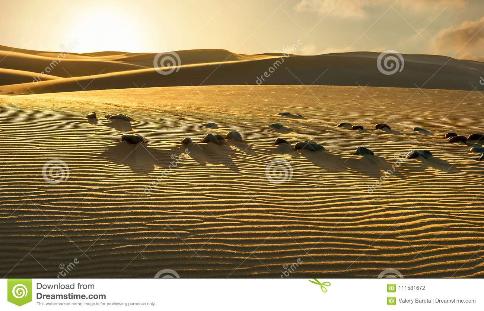 Nationaal park van Maspalomas-zandduinen Gran Canaria, Kanarie isl