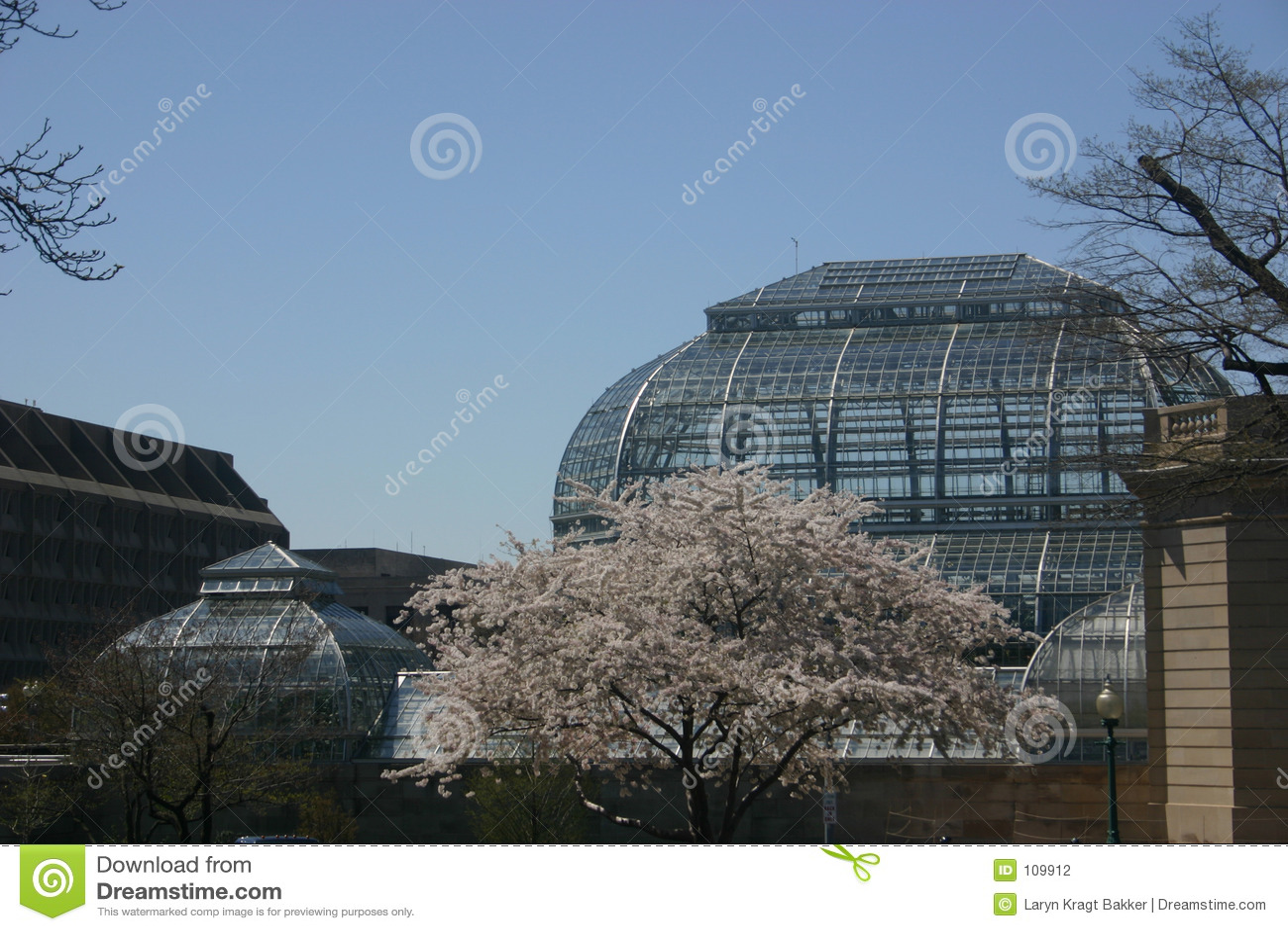 National Botanical Garden Washington Dc Stock Photo