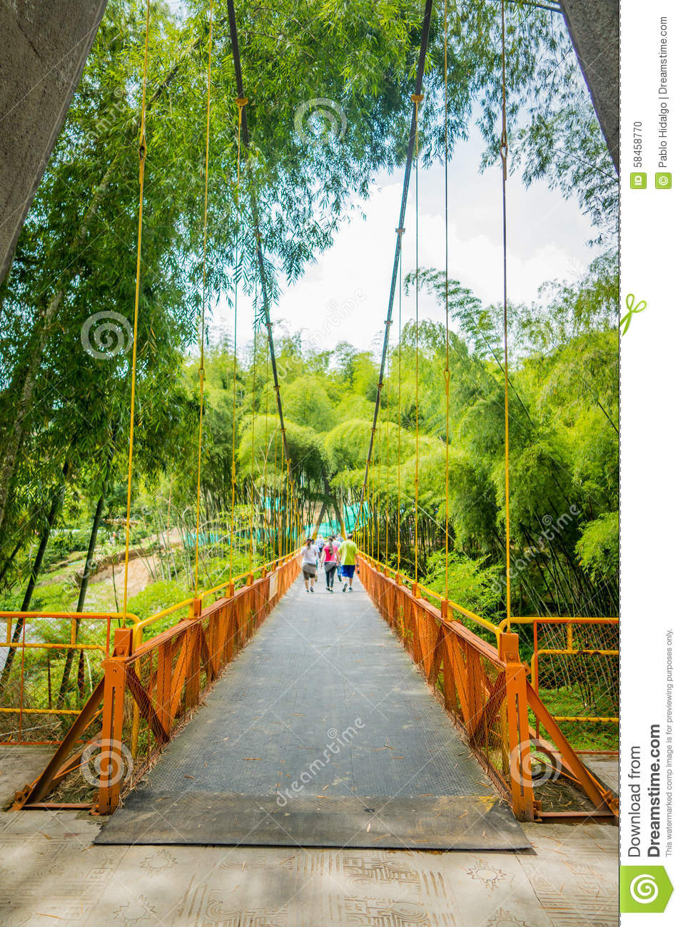 NATIONAL COFFEE PARK, COLOMBIA, Yellow pedestrian