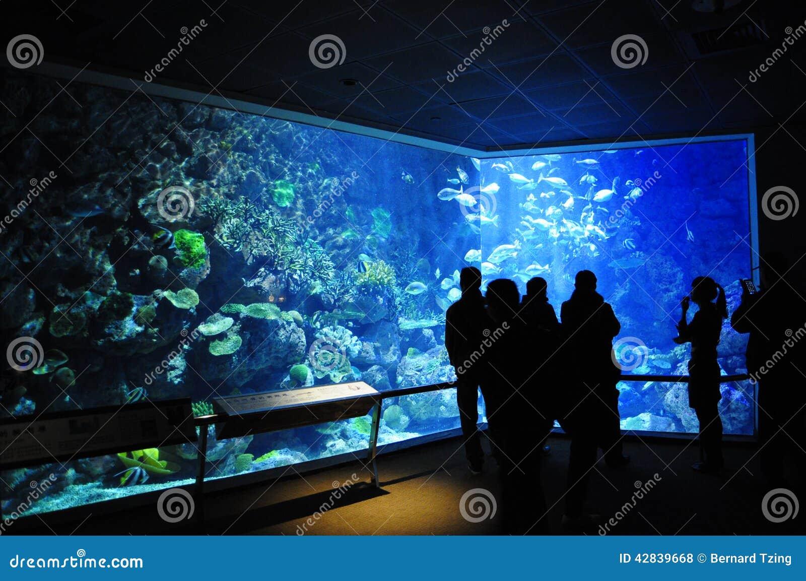 National Museum Of Marine Biology And Aquarium Stock Photo