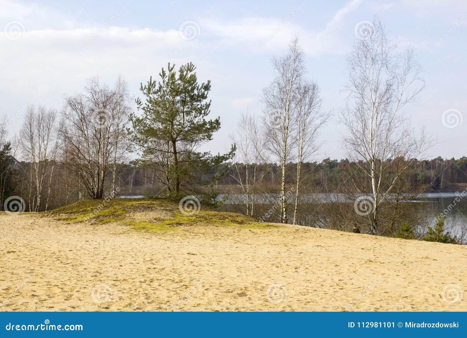 National Park Maasduinen, Netherlands