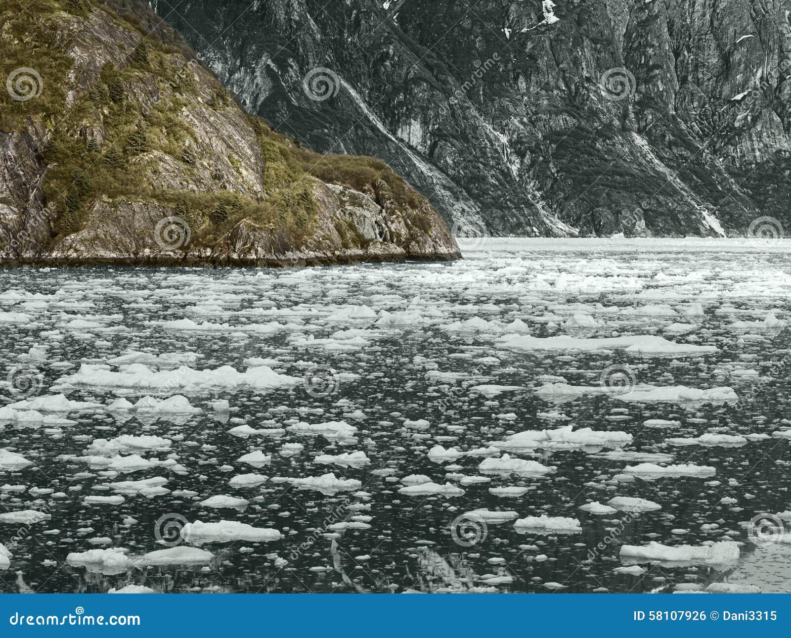 Nationalpark för alaska fjärdglaciär