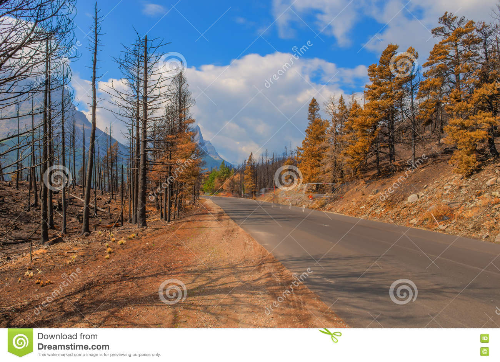 Nationalpark 2015 för efterdyningReynolds Creek Wildland Forest Fire glaciär