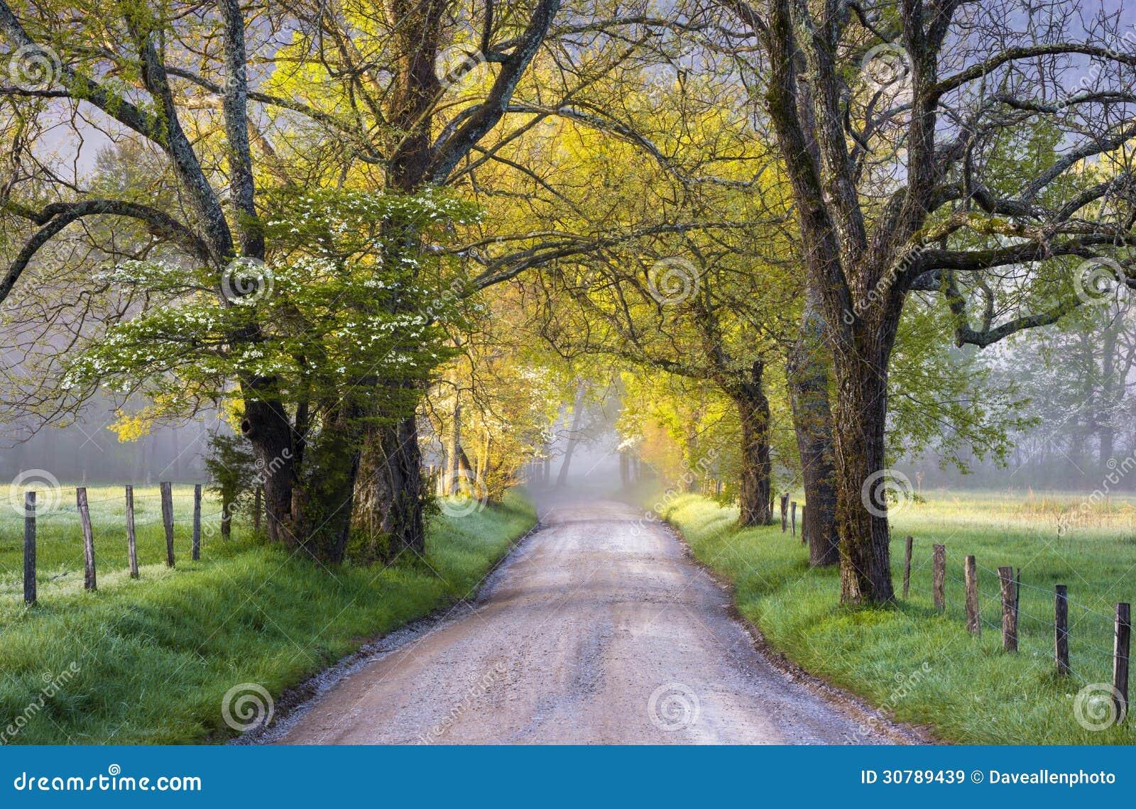 Nationalpark-szenischer Landschaftsfrühling Cades-Bucht-Great Smoky Mountains