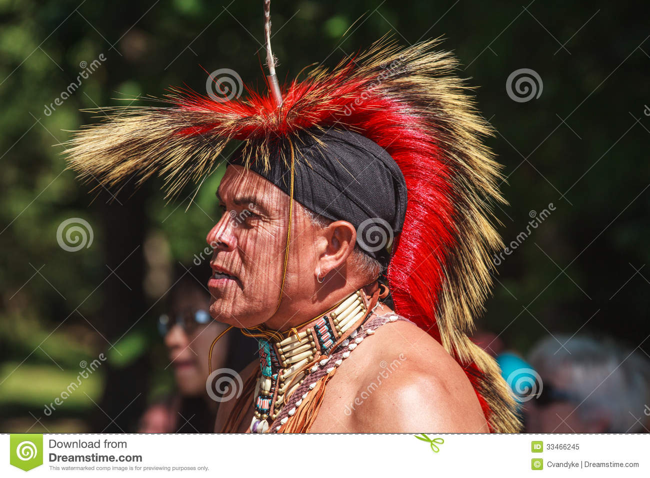 Native American Indian Editorial Image Image Of Cultural 33466245