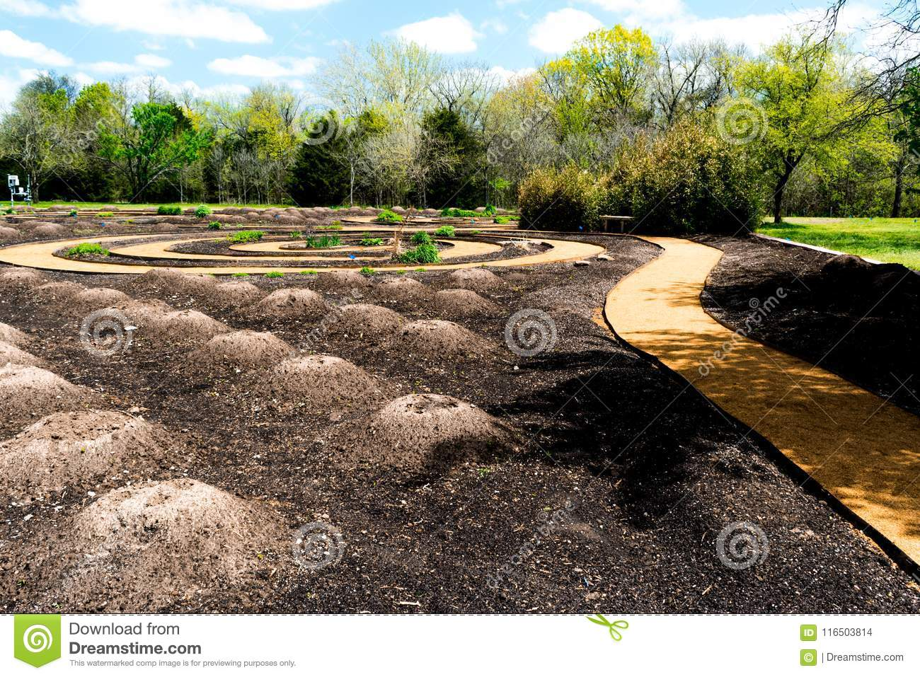 Native American Traditional Three Sisters Spiral Garden Stock Photo ...
