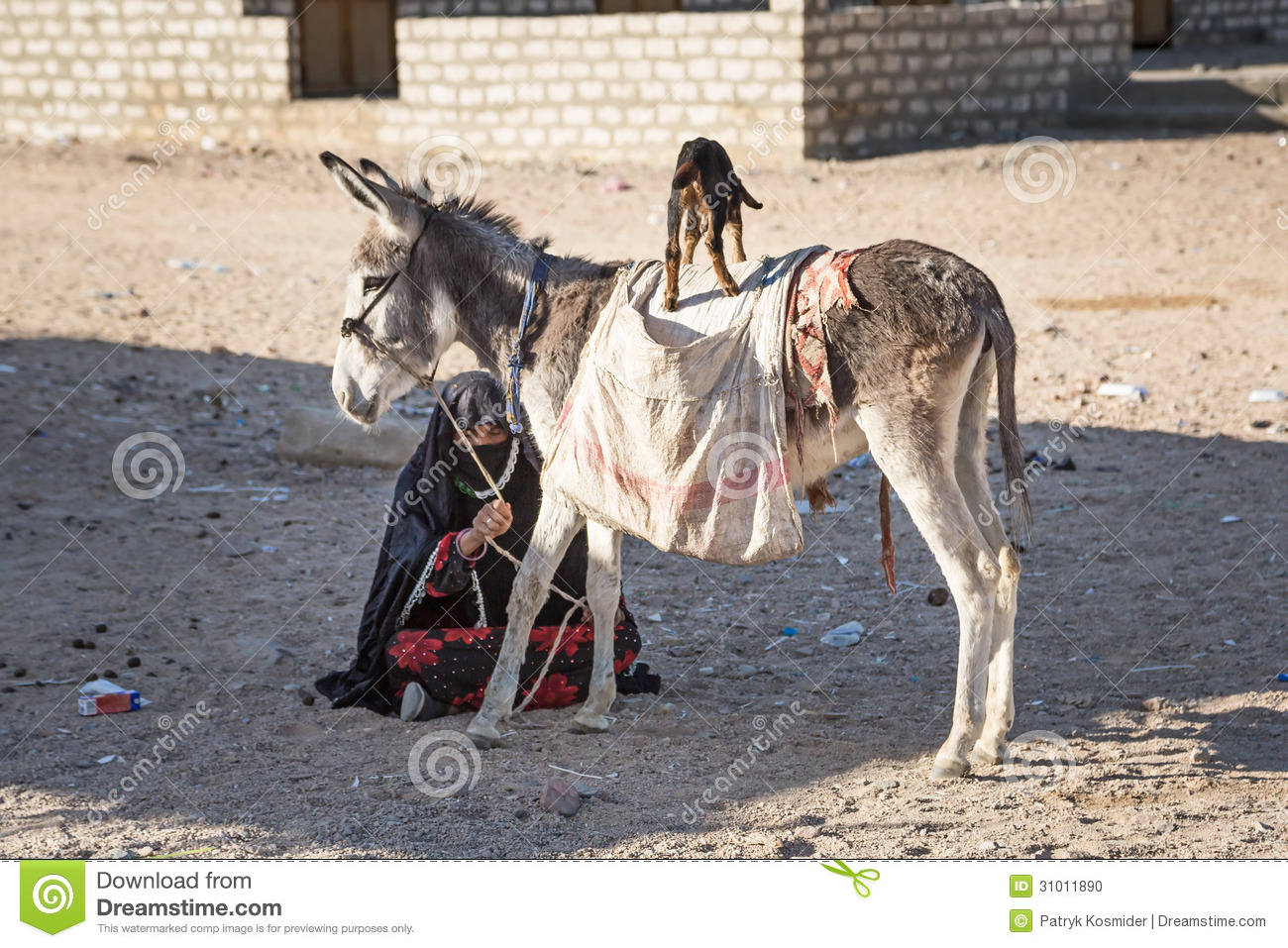 Native Arabic Woman With Donkey And Goat Editorial Image