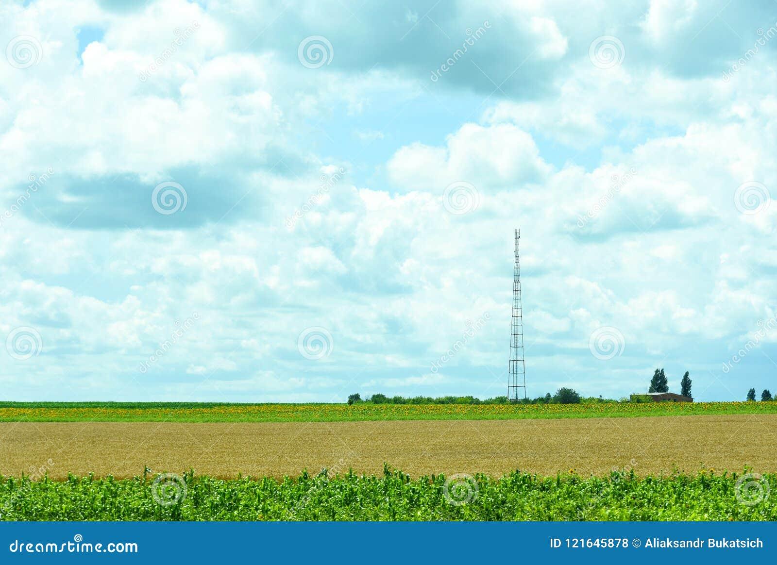 Natur av Ukraina Landskapet av ukrainska jordbruks- fält av sommarfält Lantgården Fält med havre, vete