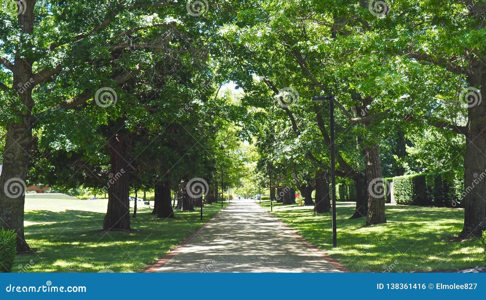 Natur Canberras im Freien