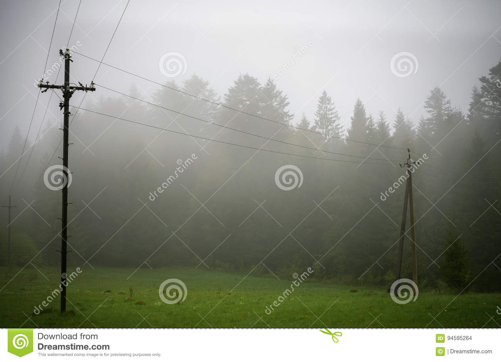 Natur Carpathians i regnet
