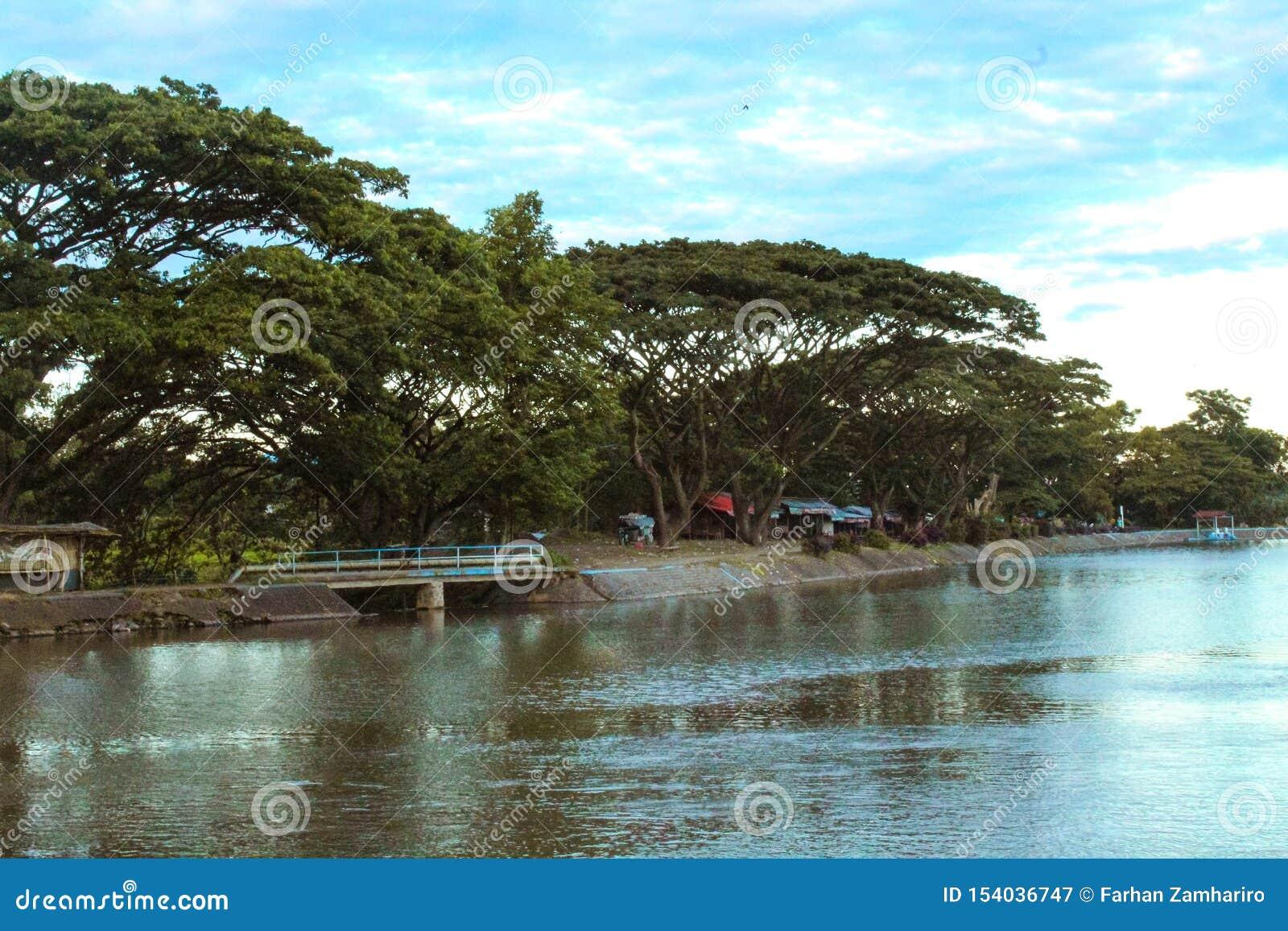 Natur - eine schöne Landschaft im See