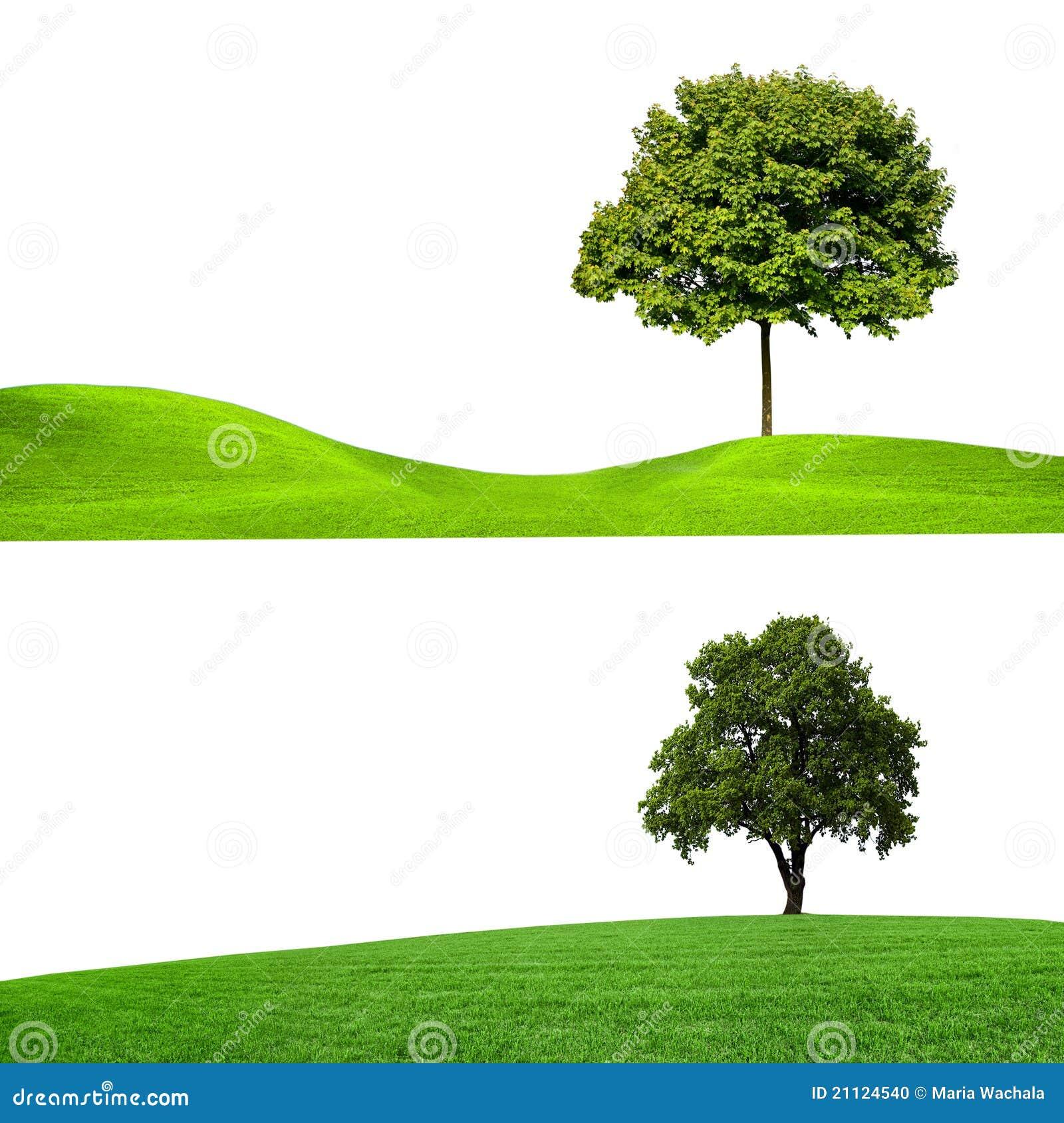 Natur, Fahnen