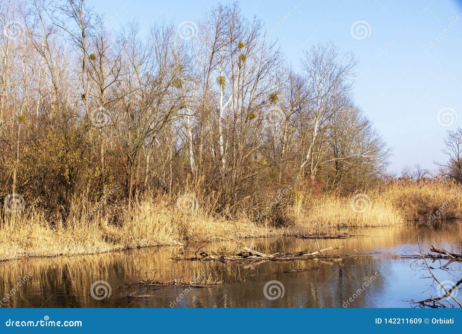Natur fotografie od Szigetköz w Węgry