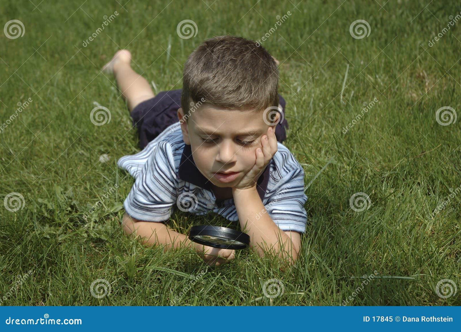 Natur observera litet barn