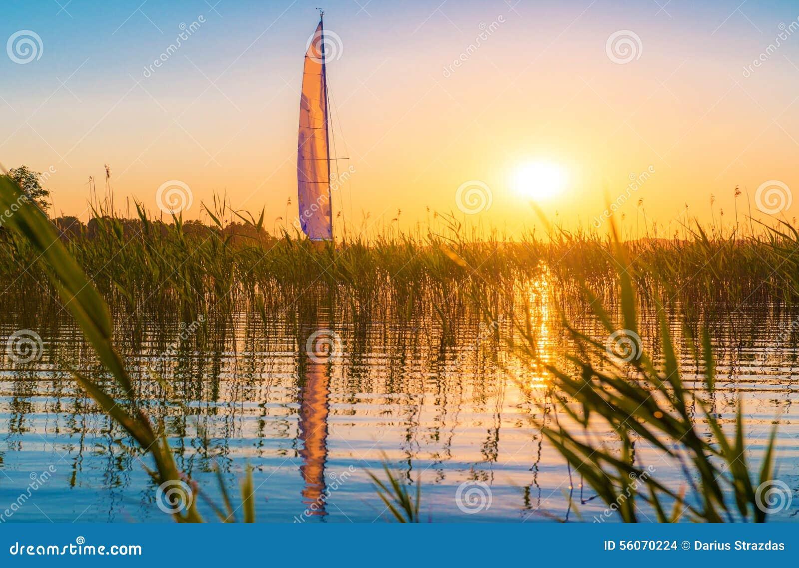 Natur sjö