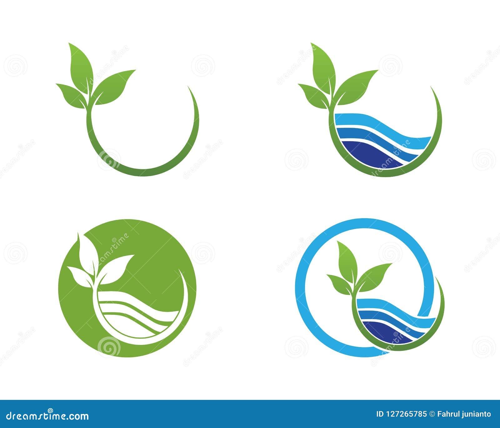 Natura liścia ikony lgoo wektoru szablon