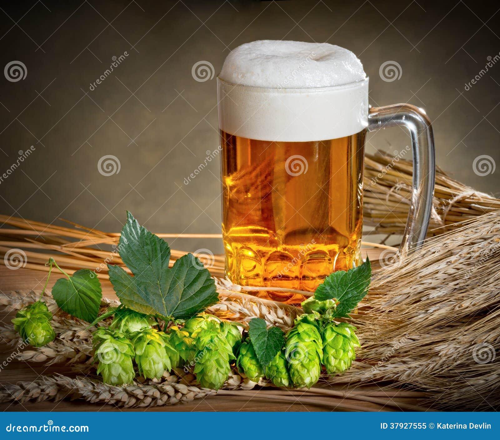 Natura morta con birra ed il luppolo