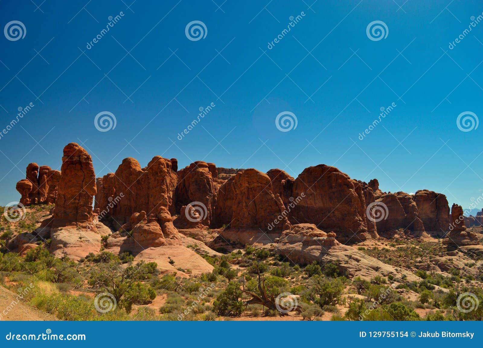 Natura nel parco nazionale di arché