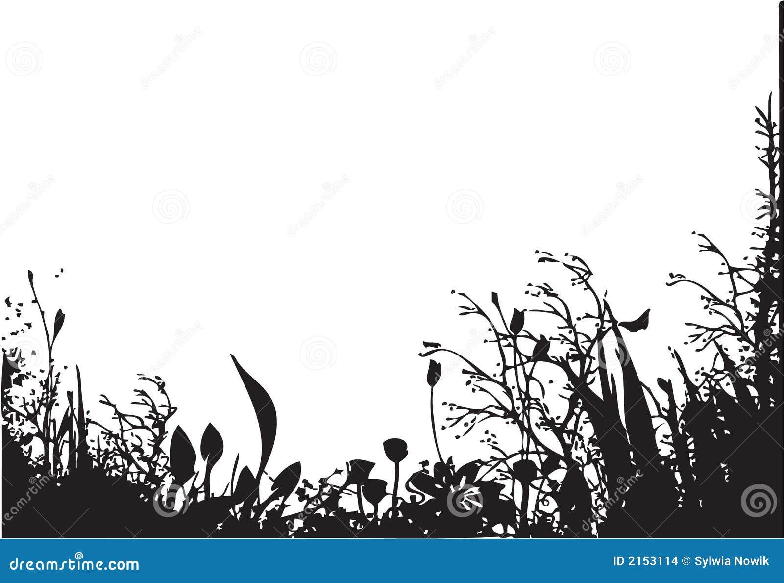 Natura orgânico