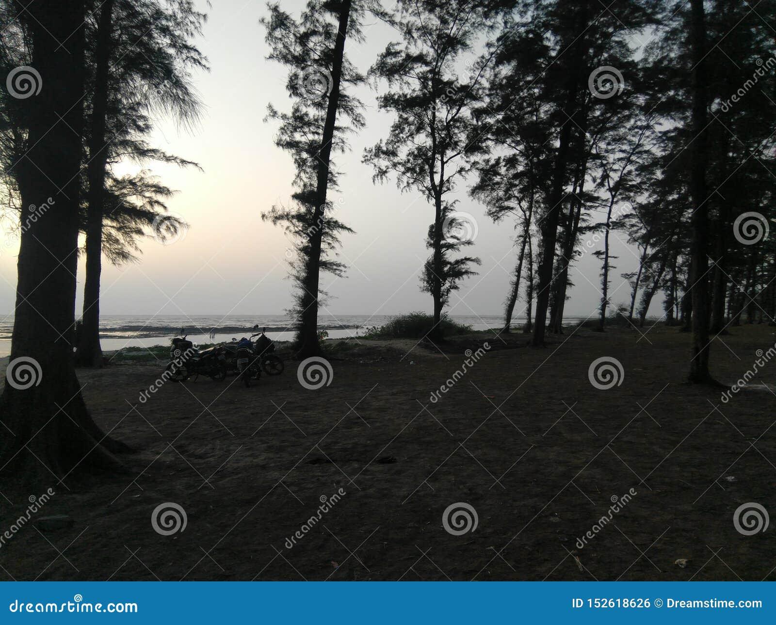 Natura plaży stroną