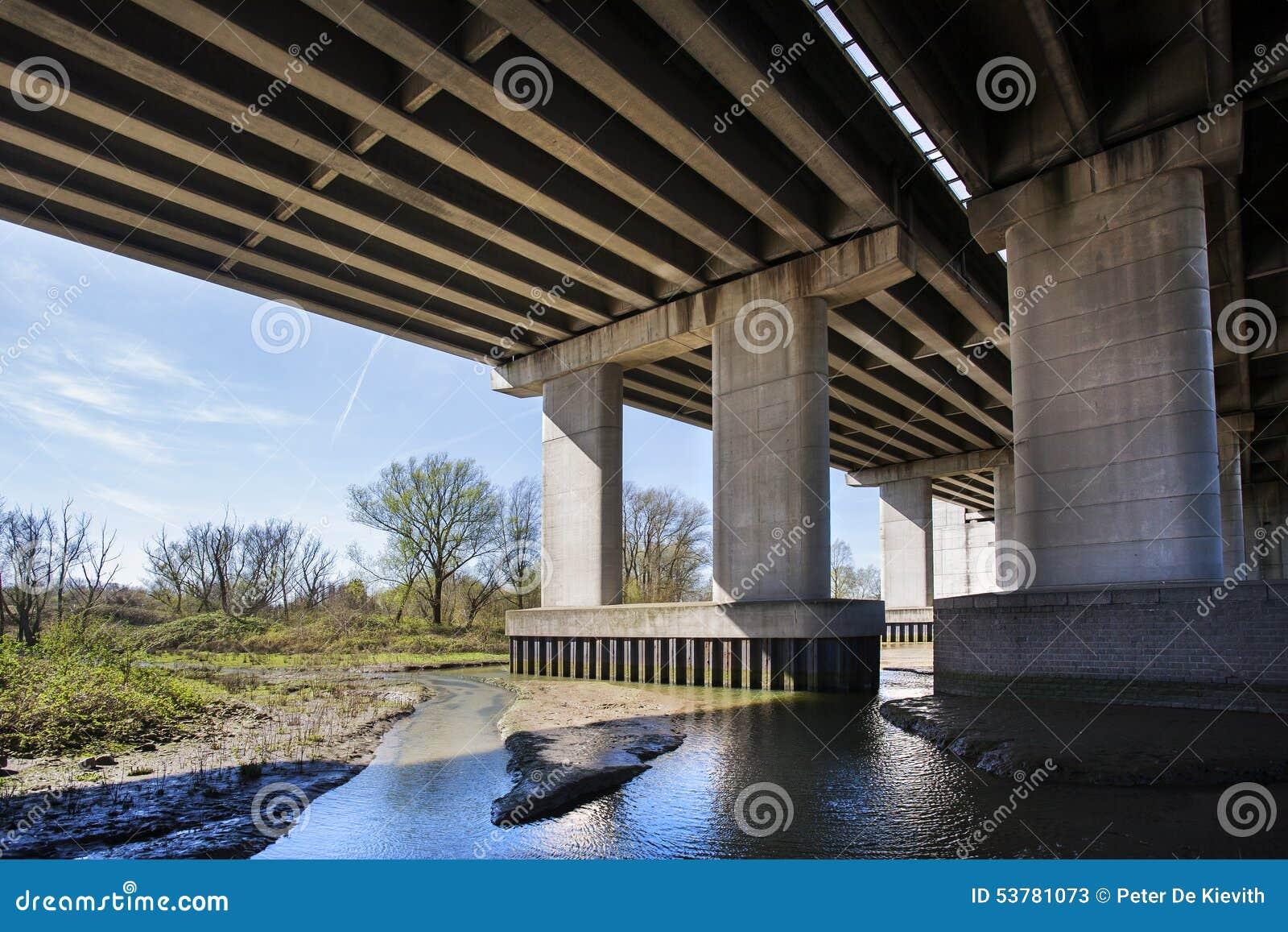 Natura pod mostem