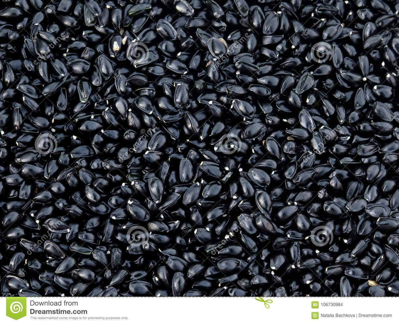 natural backdrop of many small shiny black seeds