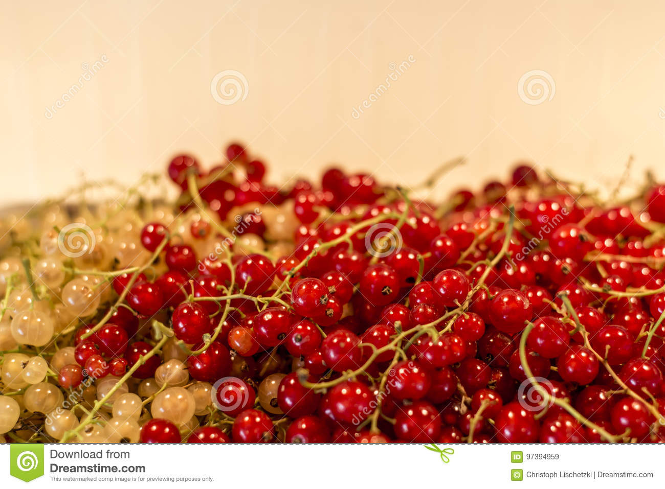 natural background berries red white currant fruit bio organic