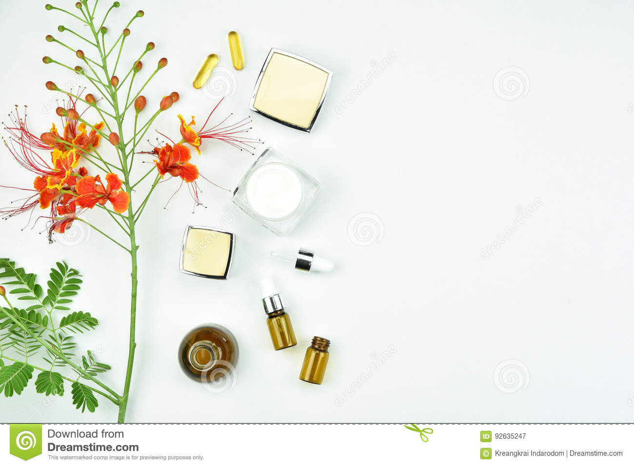 Natural Background With Copy Space For Beauty Product Royalty Free Stock Photography
