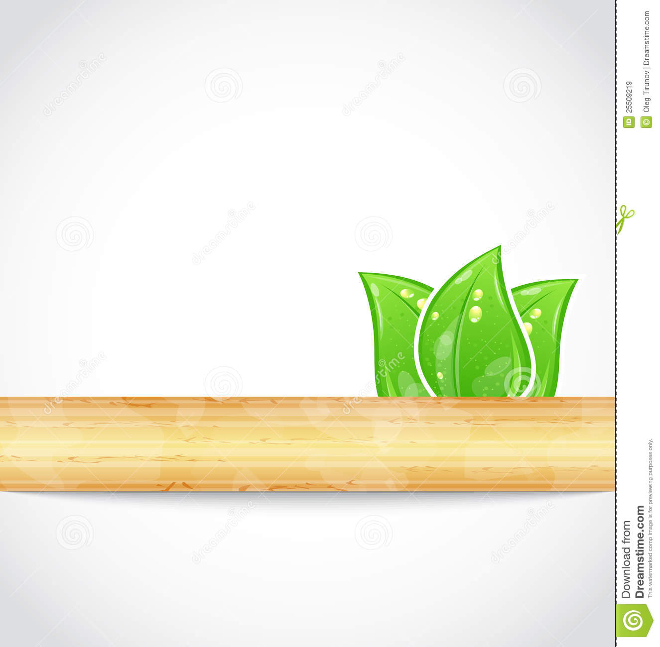 Natural background with eco green leaves and wood royalty for Why is wood sustainable