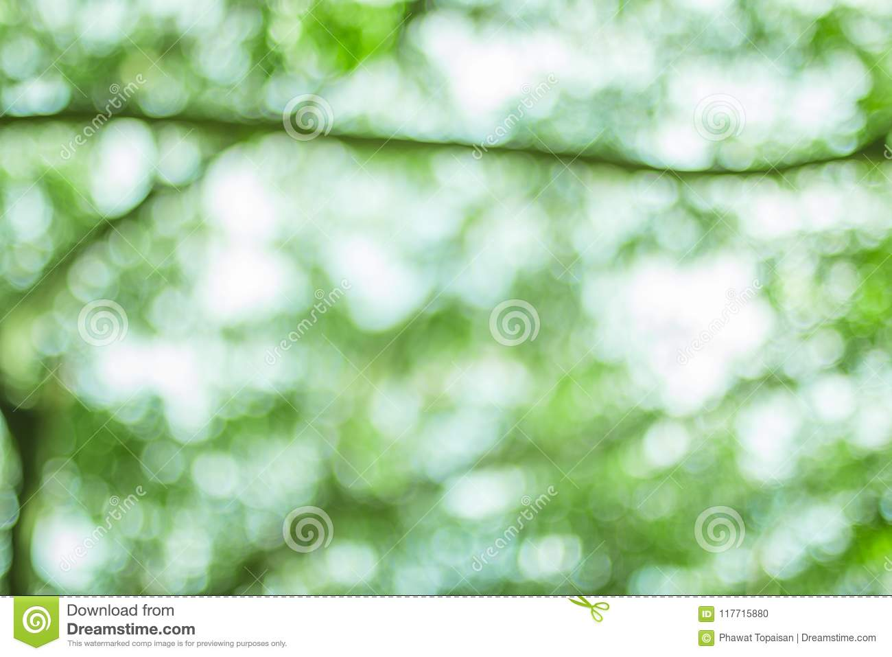 Natural bokeh background, Fresh healthy green bio background with abstract blurred foliage and bright summer sunlight.