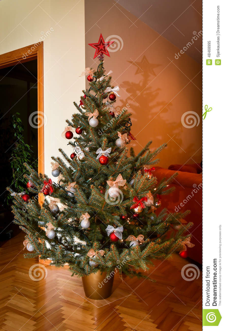 Natural Christmas Tree Stock Photo Image 48468995
