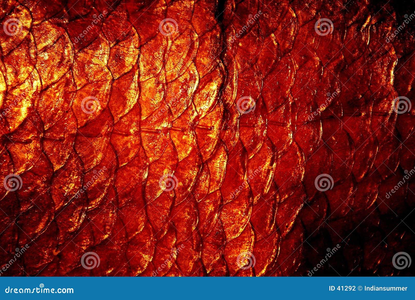 Natural exuviae texture