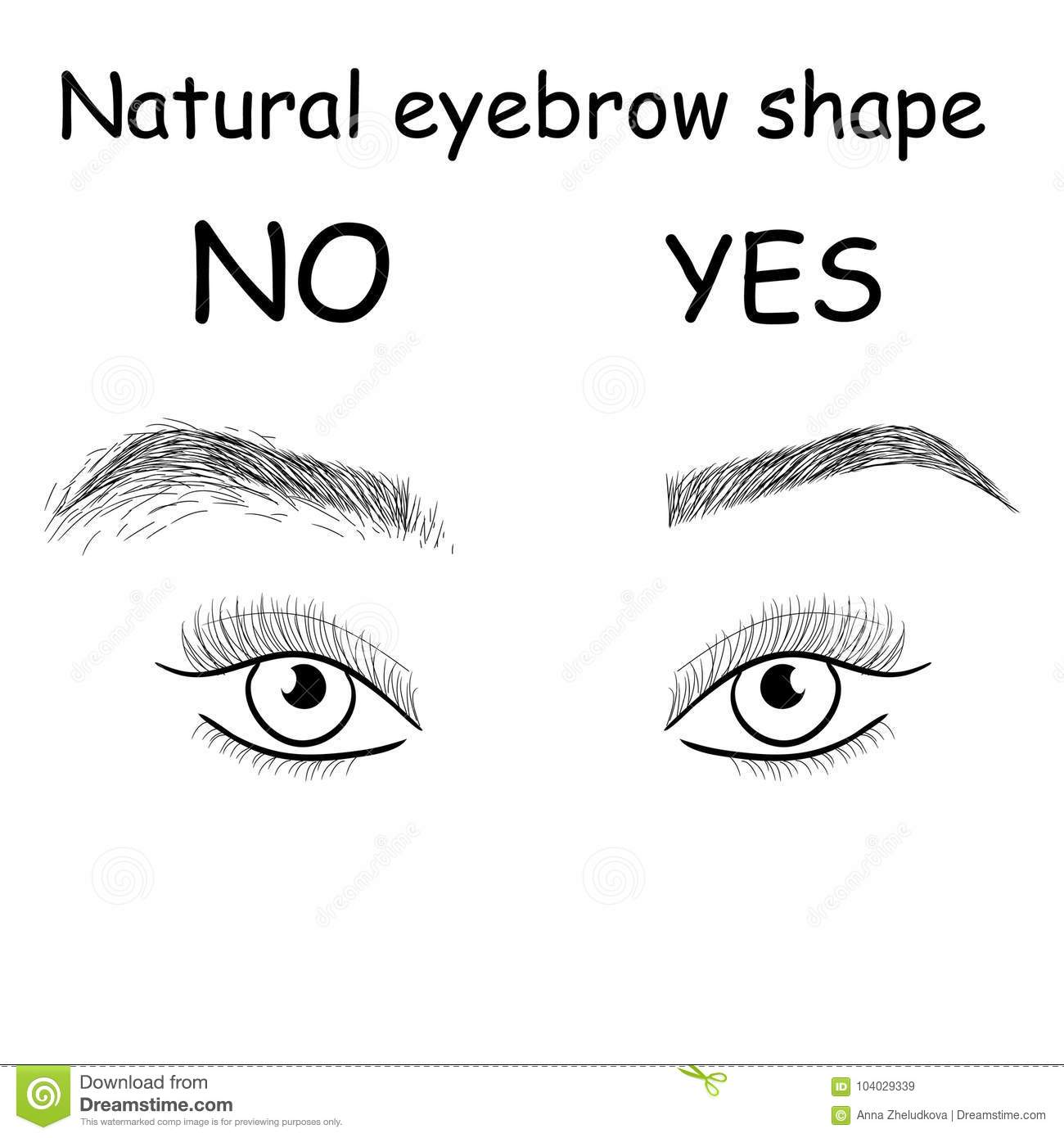 Natural Eyebrow Shape Right And Wrong Brows Stock Illustration