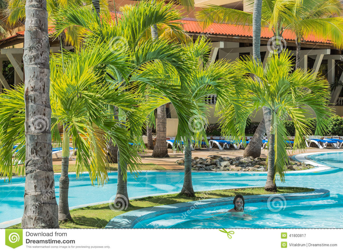 Natural fluffy palm tree garden with little girl swimming in the pool stock image image of for Best palm tree for swimming pool