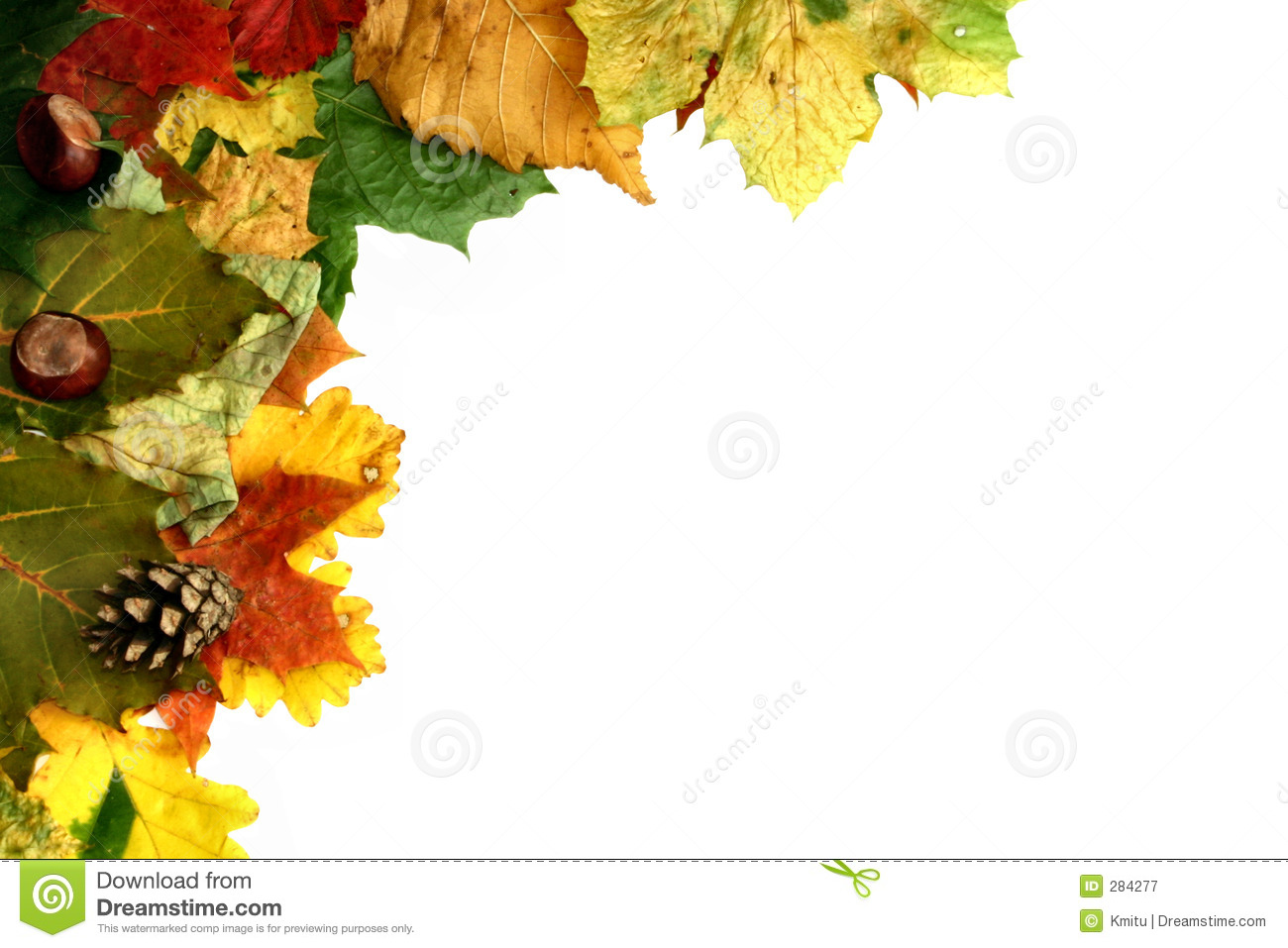 Natural frame #2 stock image. Image of edge, decorated - 284277