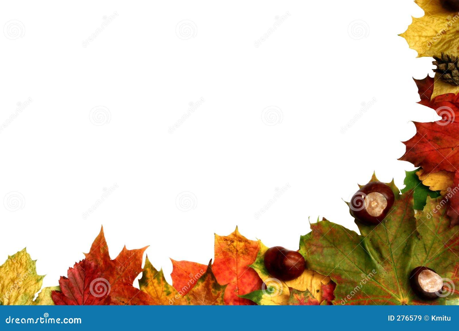 Natural frame #3 stock image. Image of frame, embrasure - 276579